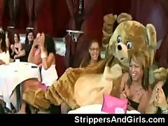 Dancing bear stripper party with facial on latina girl
