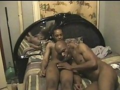 Sleeping dude sucked by Black roommate