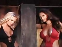 Busty Tera Patrick and Briana Banks posing hot in a photosho...